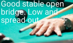 Good stable open bridge. Low and spread out.